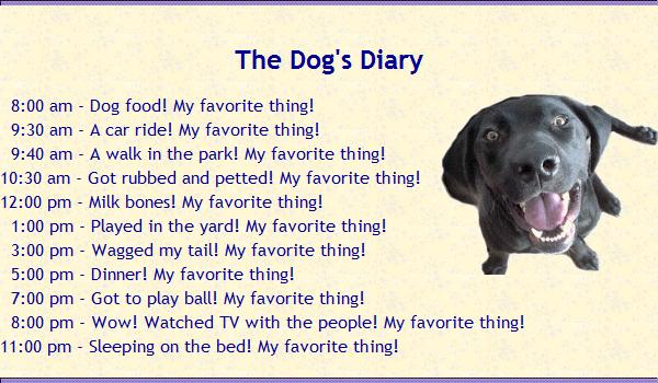 dog-diary