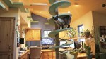 catplayground