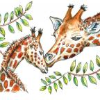 Doodlewash: Creating an Online Watercolor Community