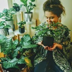 Beginner Plant Tips: Becoming A Better Plant Parent