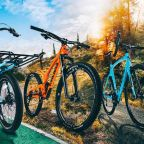 3 Types of Bikes: What You Need to Know