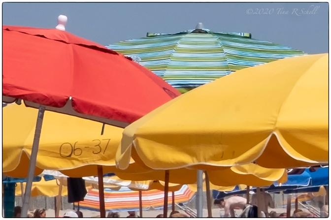 BEACH UMBRELLAS, DELAWARE