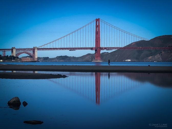 California, San Francisco, Pandemic, Photography, iPhone, City, Isolation, Jane Lurie